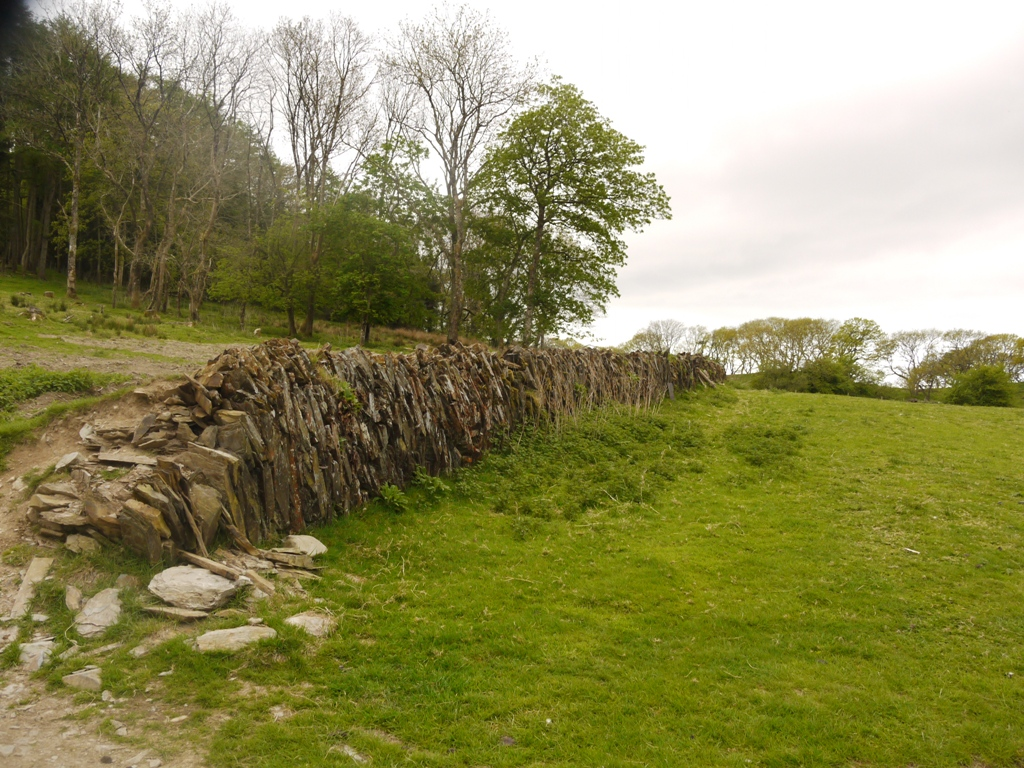 Vertically placed stones hold back the bank and ditch boundary of the deer park