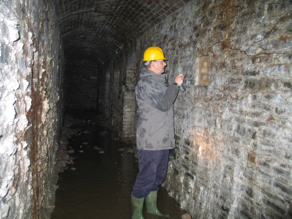 In the Hafod cellars 2006